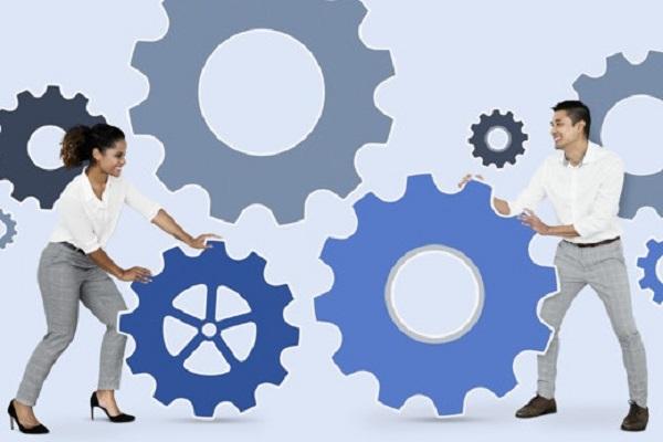 CMG 400 Career Management